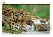 Jaguar Resting Carry-all Pouch