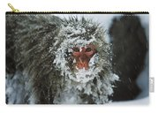 Japanese Macaque Covered In Snow Japan Carry-all Pouch