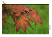 Japanese Maple Autumn Colors Carry-all Pouch