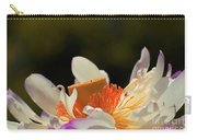 Japenese Jewel Carry-all Pouch by Aimelle