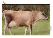 Jersey Cow In Pasture Carry-all Pouch