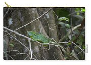 Jesus Christ Lizard Carry-all Pouch