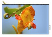 Jewelweed Open Door  Carry-all Pouch