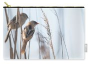 jn01 Bearded Reedling Juvenile Carry-all Pouch