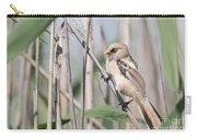jn14 Bearded Reedling Juvenile Carry-all Pouch