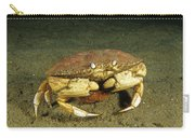 Jonah Crab Carry-all Pouch