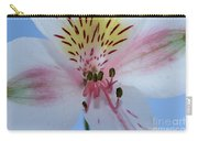 Joy Of Amaryllis Carry-all Pouch