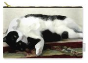 Joyful Kitty Carry-all Pouch