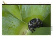 Jumper In Yucca Carry-all Pouch