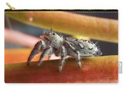 Jumper Spider Carry-all Pouch
