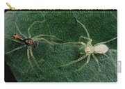 Jumping Spider Colorful Male And Pale Carry-all Pouch