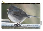 Junco On Board Carry-all Pouch