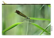 June Damselfly  Carry-all Pouch