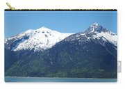 Juneau Port 2 Carry-all Pouch