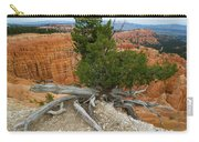 Juniper Tree Clings To The Canyon Edge Carry-all Pouch