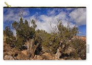 Juniper Trees At The Ghost Ranch Color Carry-all Pouch