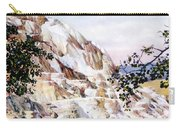 Jupiter Terrace Yellowstone Np Carry-all Pouch