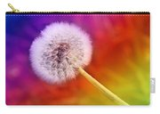 Just Dandy Rainbow Carry-all Pouch