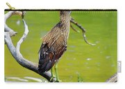 Juvenile Black-crowned Night Heron  Carry-all Pouch