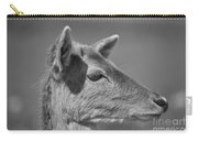 Juvenile Deer Close-up V2 Carry-all Pouch