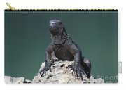 Juvenile Marine Iguana Galapagos Carry-all Pouch