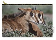 Juvenile Sable Antelope Carry-all Pouch