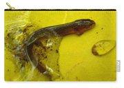 Juvenile Salamander Carry-all Pouch