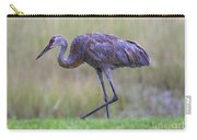 Juvenile Sandhill Carry-all Pouch