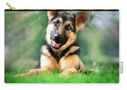 K9 Cute Carry-all Pouch