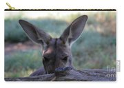 Kangaroo-4 Carry-all Pouch