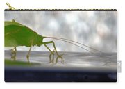 Katydid Reflection Carry-all Pouch
