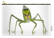 Katydid Suriname Carry-all Pouch