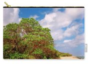 Kauai Beach Carry-all Pouch