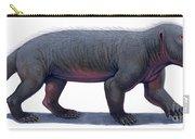 Kayentatherium, A Mammal-like Carry-all Pouch