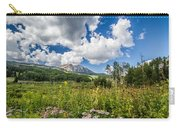 Kebler Pass Meadow Carry-all Pouch