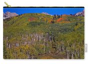 Kebler Pass Panorama Carry-all Pouch