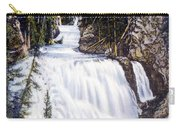 Kepler Cascades Yellowstone National Park Carry-all Pouch
