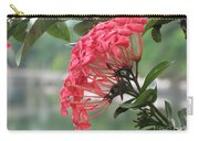 Kerala Beauty Carry-all Pouch