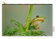 Kermits Canopy Carry-all Pouch