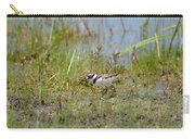 Killdeer Hatchling Carry-all Pouch