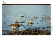 Kildeer Hunting For Worms Carry-all Pouch
