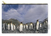 King Penguins On Rocky Beach South Carry-all Pouch