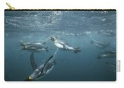 King Penguins Swimming Macquarie Isl Carry-all Pouch