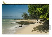 Kite Beach Kanaha Beach Maui Hawaii Carry-all Pouch