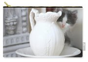 Kitten And The Picther Carry-all Pouch