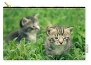 Kitty In Grass Carry-all Pouch