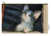 Kitty Photo Art 05 Carry-all Pouch