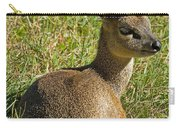 Klipspringer Antelope Carry-all Pouch
