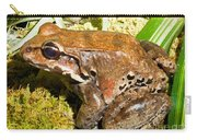 Knudsen Thin Toed Frog Carry-all Pouch