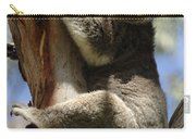 Koala Carry-all Pouch by Bob Christopher